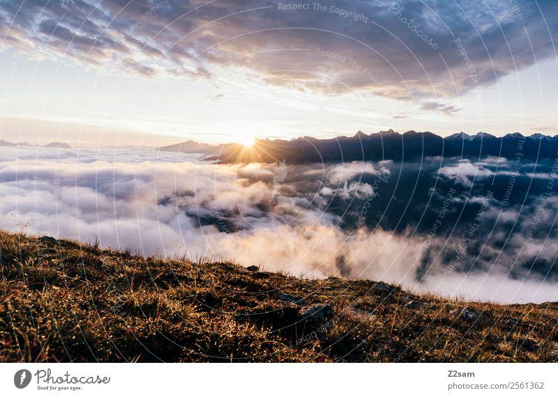 Sonnenaufgang | Pitztal Abenteuer Berge u. Gebirge Umwelt Natur Landschaft Himmel Wolken Sonnenuntergang Sonnenlicht Sommer Schönes Wetter Nebel Alpen Gipfel