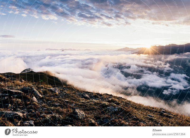 Sonnenaufgang | Venet Gipfel | Inntal Natur Landschaft Himmel Wolken Sonnenuntergang Sommer Schönes Wetter Alpen Berge u. Gebirge ästhetisch gigantisch