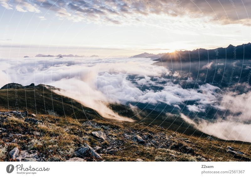 Sonnenaufgang | Inntal | Venet Gipfel Berge u. Gebirge Natur Landschaft Himmel Wolken Sonnenuntergang Sonnenlicht Sommer Schönes Wetter Nebel Alpen leuchten