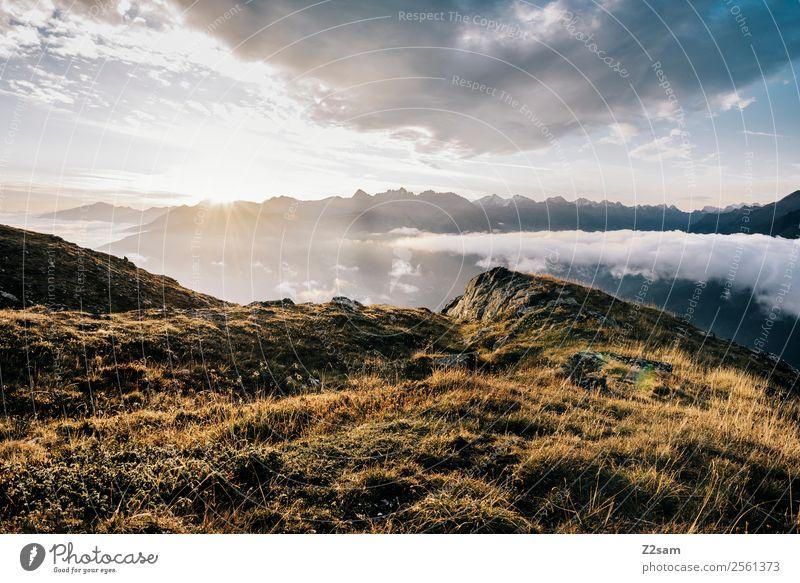 Venet   Gipfel   Sonnenaufgang   Alpen Himmel Natur Sommer Landschaft Erholung Wolken Einsamkeit ruhig Berge u. Gebirge Wärme Umwelt natürlich Freiheit