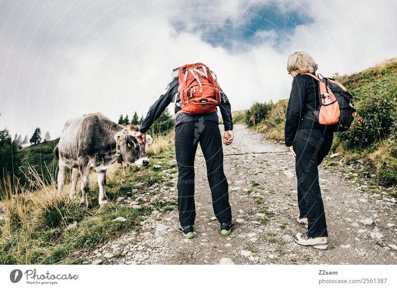 Wanderer mit Kuh Frau Mensch Himmel Natur Ferien & Urlaub & Reisen Mann Landschaft Wolken Berge u. Gebirge Senior natürlich Wege & Pfade Feste & Feiern Paar