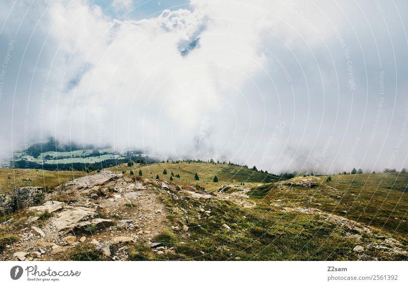 Ausblick vom Venet Himmel Natur Landschaft Wolken ruhig Berge u. Gebirge Herbst Umwelt natürlich Wiese Nebel Idylle Perspektive Sträucher bedrohlich