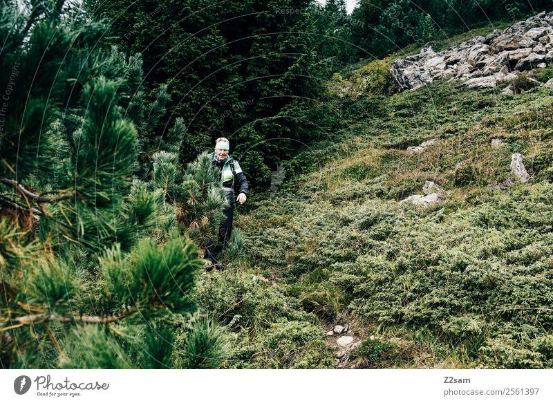 Wanderer im Pitztal Natur Mann grün Landschaft Erholung Einsamkeit ruhig Wald Berge u. Gebirge Erwachsene Herbst Senior Wege & Pfade Tourismus gehen wandern