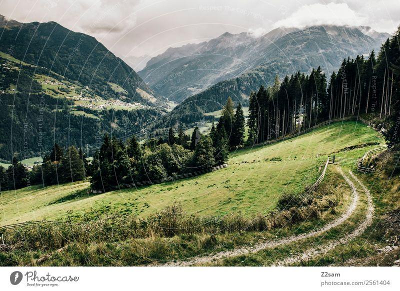 Pitztaler Alpen | Wenns Natur Ferien & Urlaub & Reisen Sommer grün Landschaft Erholung Einsamkeit ruhig Wald Berge u. Gebirge Umwelt natürlich Wege & Pfade