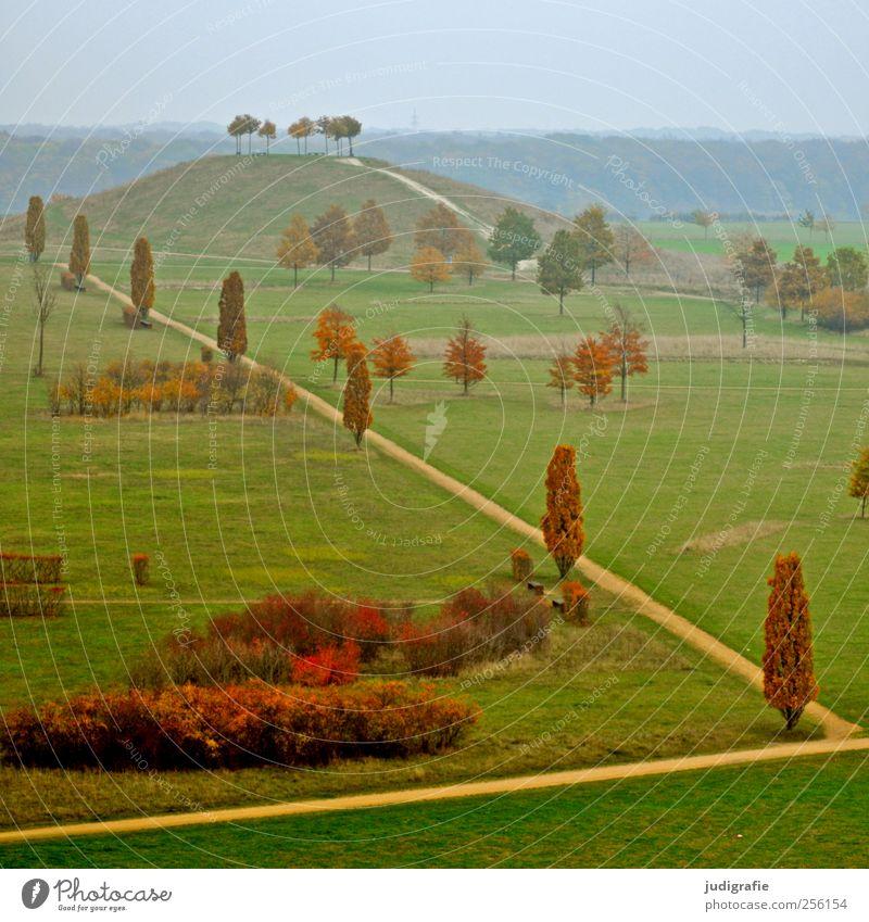 Hannover Natur Baum Herbst Wiese Umwelt Landschaft Wege & Pfade Park Sträucher Hügel