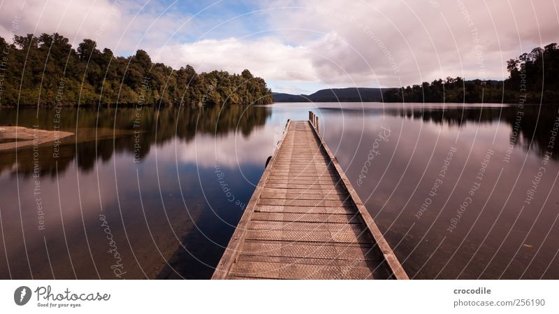 New Zealand 166 Lifestyle Ferien & Urlaub & Reisen Tourismus Ausflug Ferne Sommer Umwelt Natur Landschaft Wolken Schönes Wetter Pflanze Baum Wald Hügel Seeufer
