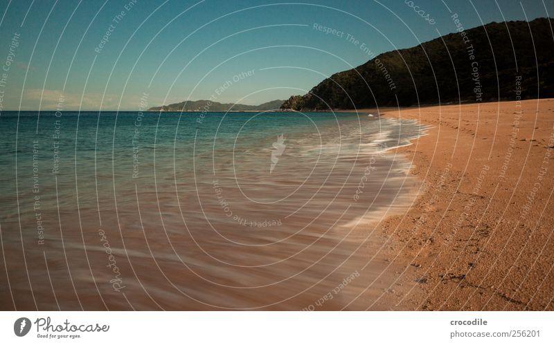 New Zealand 172 Freizeit & Hobby Ferien & Urlaub & Reisen Tourismus Freiheit Sommerurlaub Insel Wellen Umwelt Natur Schönes Wetter Urwald Hügel Felsen Küste