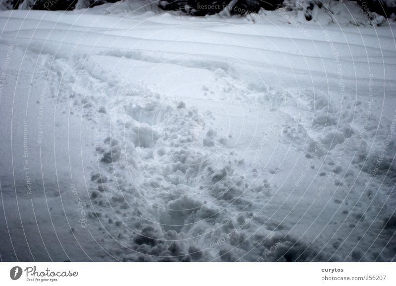 Yeti Umwelt Natur Landschaft Winter Klima Klimawandel Wetter Unwetter Eis Frost Schnee kalt Abenteuer Spuren wandern Farbfoto Außenaufnahme Lomografie Holga