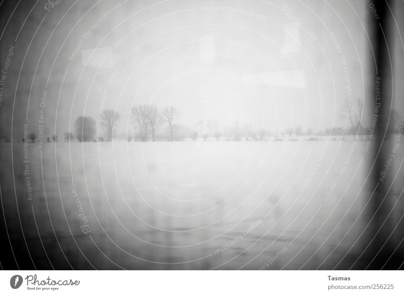 Fade To Black Einsamkeit Landschaft Wiese kalt Schnee Feld Fernweh schlechtes Wetter Heimweh Endzeitstimmung Schwarzweißfoto