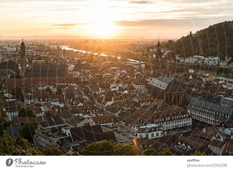 Aussicht auf die Altstadt von Heidelberg bei Sonnenuntergang Himmel Sonnenaufgang Sonnenlicht Sommer Schönes Wetter Kirche Idylle Romantik Religion & Glaube