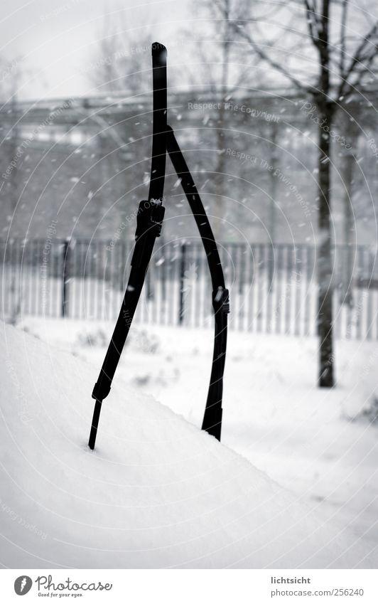 Dude, Where's My Car? Winter Wetter Eis Frost Schnee Schneefall Baum Park Stadt Menschenleer Autofahren Straße weiß kalt PKW Windschutzscheibe Scheibenwischer