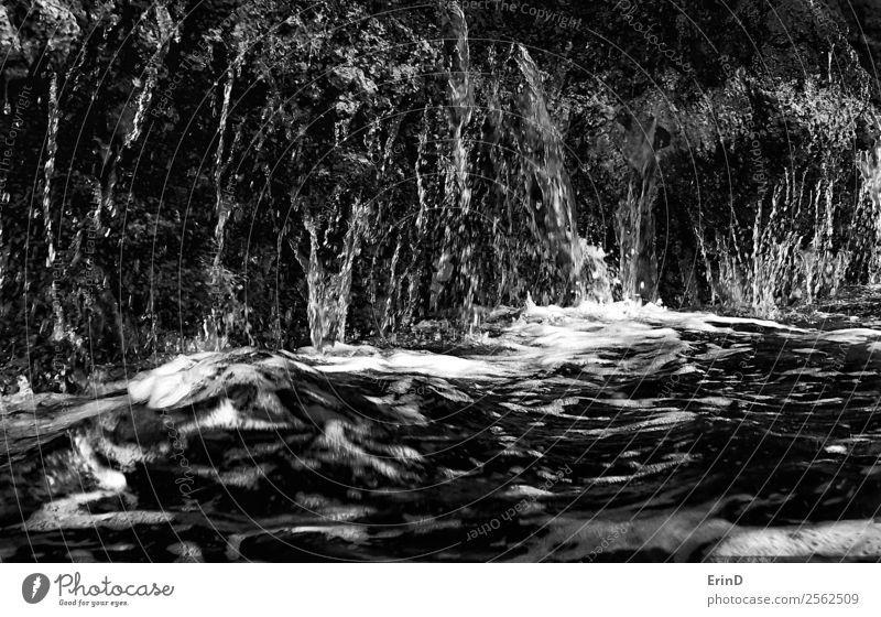 Wasser fließt von der Lavaklippe in den Ozean Schwarz-Weiß Nahaufnahme Design Meer Natur Felsen nass schwarz weiß Tropfen davonlaufen Konsistenz dramatisch