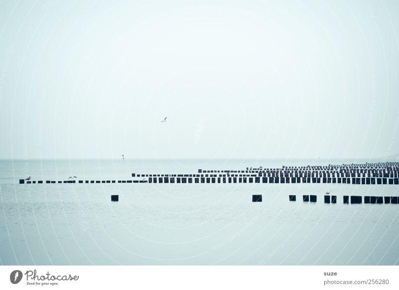 Level 2.0 Himmel Natur Wasser blau Meer kalt Umwelt Küste Wetter Horizont Ordnung Grafik u. Illustration Klarheit Ostsee graphisch Wolkenloser Himmel