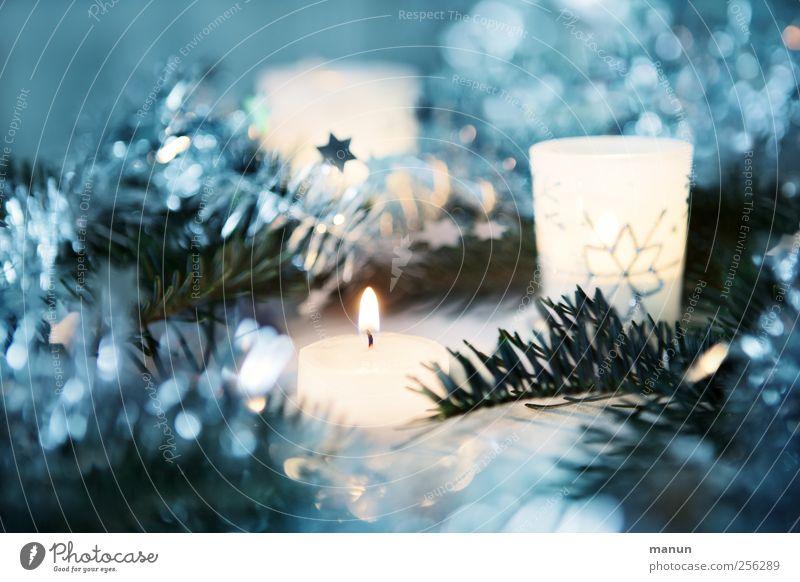 Festbeleuchtung Weihnachten & Advent blau weiß schön kalt Stimmung glänzend authentisch Stern (Symbol) leuchten Dekoration & Verzierung Kerze Kitsch silber Vorfreude Weihnachtsdekoration