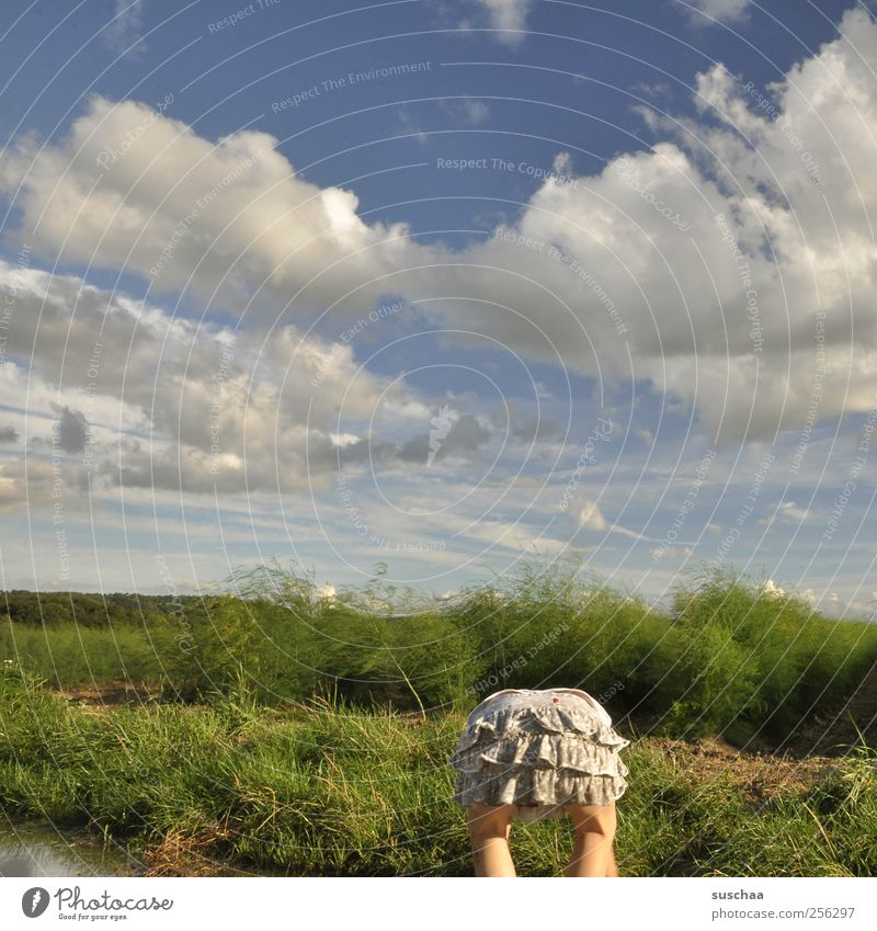 alle meine entchen ... Kind Mädchen Gesäß 1 Mensch 3-8 Jahre Kindheit Umwelt Natur Landschaft Himmel Wolken Sommer Klima Schönes Wetter Gras Sträucher Feld Rock