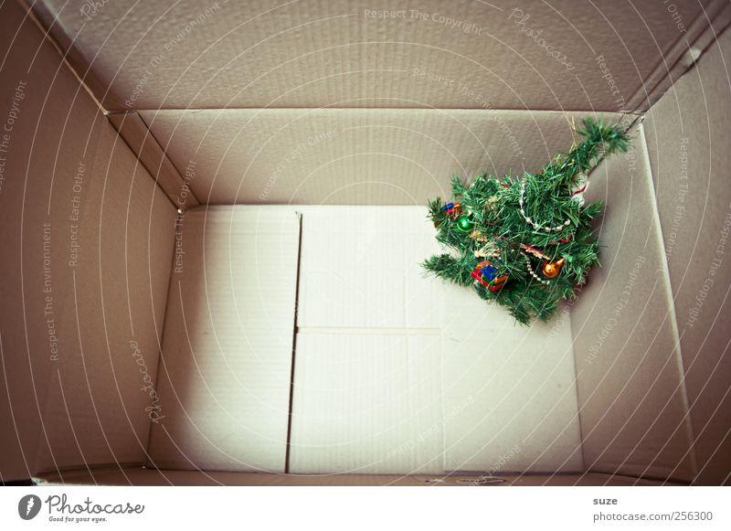 Weil's so schön ist ... Dekoration & Verzierung Weihnachten & Advent Kunststoff stehen klein lustig niedlich grün Vorfreude Überraschung Geschenk Weihnachtsbaum