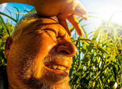 ein Mann sieht bei großer Hitze ins Sonnenlicht Mensch Himmel Natur Sommer Pflanze Erwachsene Wärme Umwelt Gras Kopf maskulin Wetter Schönes Wetter Sträucher