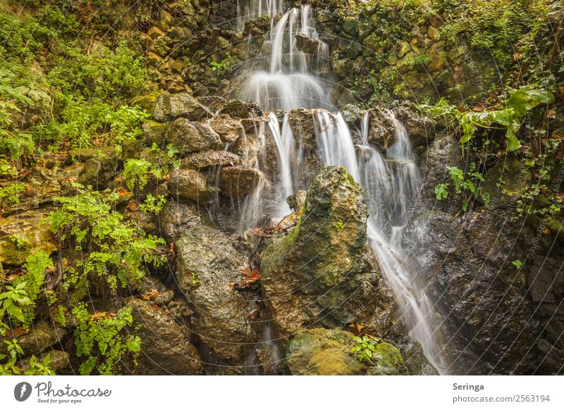 Abwärts Natur Sommer Pflanze grün Wasser weiß Landschaft Erholung Tier Berge u. Gebirge gelb Herbst Umwelt orange Felsen Hügel