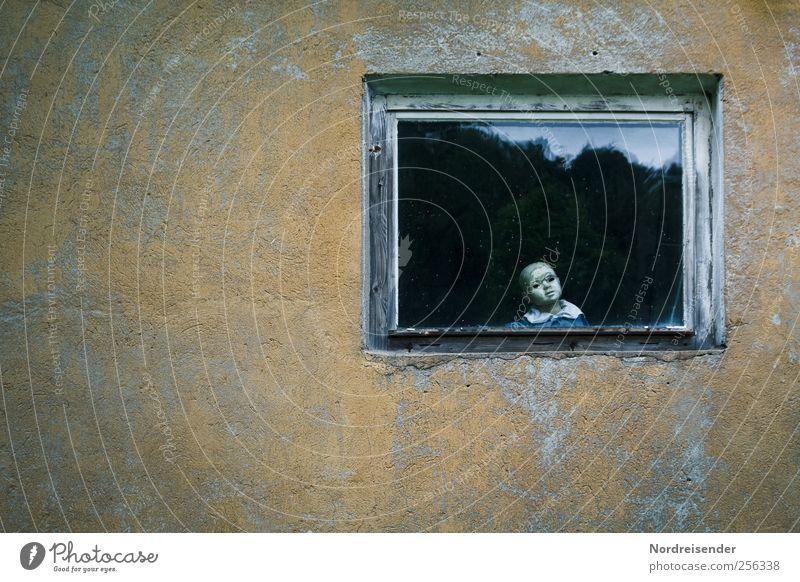 Warum fotografierst du mich? Einsamkeit dunkel Fenster Wand Mauer Traurigkeit dreckig Fassade Armut außergewöhnlich Bekleidung bedrohlich Häusliches Leben