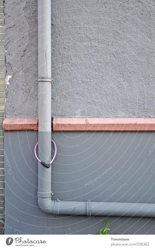 Endlich wieder vereint! Wand Gefühle grau Mauer Zusammensein rosa Beton ästhetisch Leidenschaft hängen Stadtzentrum Grünpflanze Fallrohr Sims
