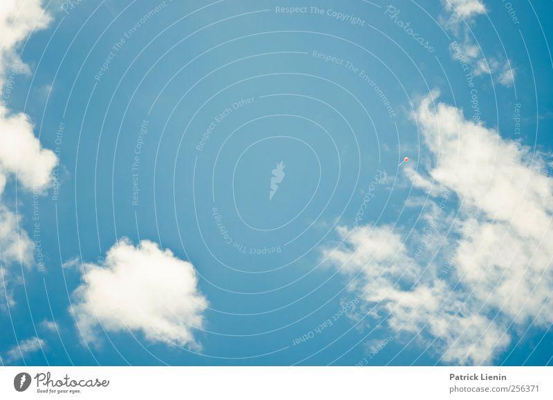 Wo fängt dein Himmel an Wellness Tourismus Sommer Umwelt Natur Landschaft Urelemente Luft Wetter Schönes Wetter Wind atmen beobachten Denken entdecken