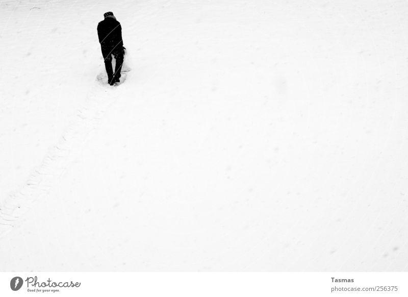 Schneeball II Mensch maskulin Mann Erwachsene 1 schlechtes Wetter Schneefall schwarz weiß Freude Lebensfreude Frühlingsgefühle Begeisterung Spielen