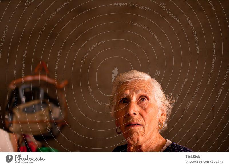 aunt Frau Mensch alt Erwachsene sprechen Senior Wärme Denken braun beobachten Hautfalten Landwirt Ring 60 und älter Weiblicher Senior Ehrlichkeit