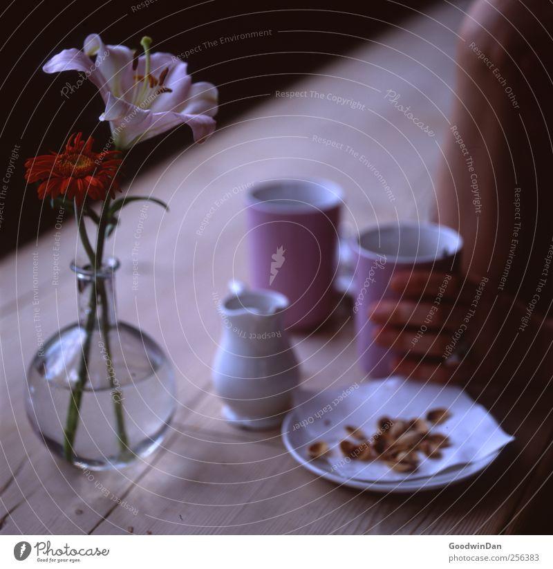 Setz dich. Mensch Arme Hand 1 Tisch Vase Blume Blüte Pistazie Teller Tasse Café warten dunkel einfach elegant schön einzigartig Stimmung Farbfoto Innenaufnahme