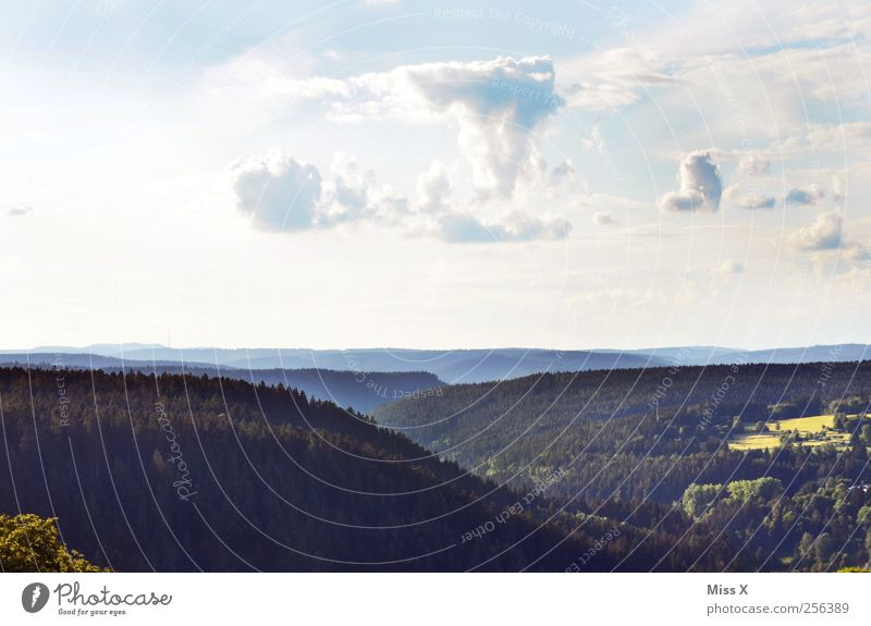 Schau ins Ländle Ferien & Urlaub & Reisen Ferne Freiheit Landschaft Himmel Wolken Schönes Wetter Baum Wald Hügel Berge u. Gebirge Erholung Horizont Schwarzwald