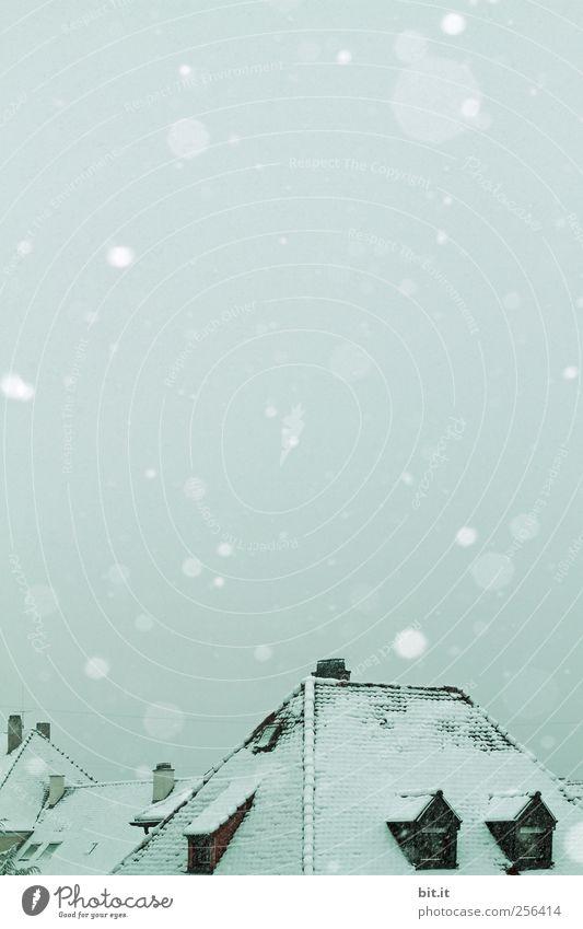 unter eurem Schutz... Umwelt Natur Himmel Winter Klima Eis Frost Schnee Schneefall Dorf Kleinstadt Haus Einfamilienhaus Fenster Dach Schornstein kalt blau