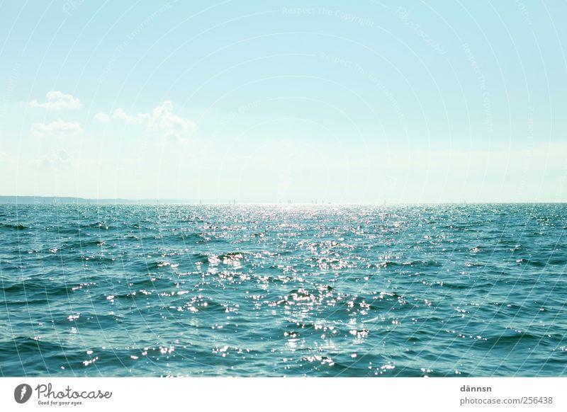 Turquoise blau Wasser grün Ferien & Urlaub & Reisen Sonne Meer Sommer Erholung Horizont Deutschland frei Tourismus Europa Schönes Wetter Sehnsucht Ostsee