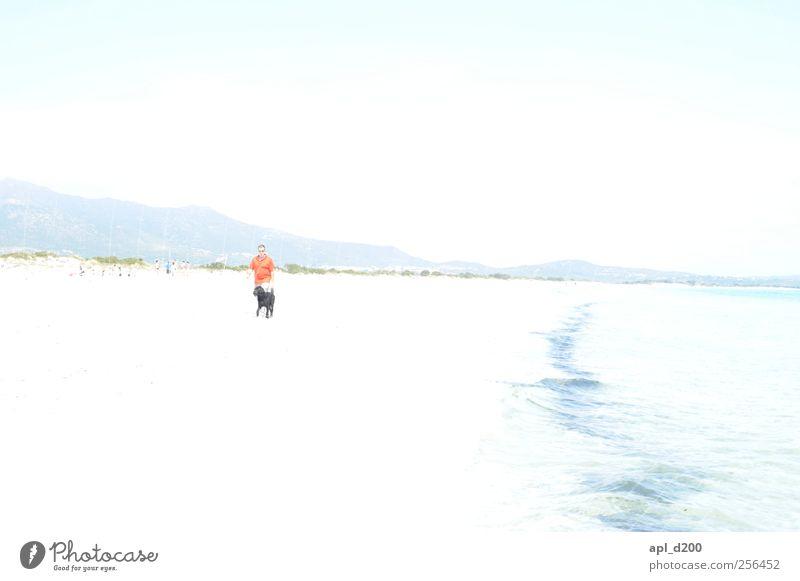 Mann. Strand. Hund. Freizeit & Hobby Ferien & Urlaub & Reisen Sommer Sommerurlaub Sonne Meer Mensch Erwachsene 1 Haustier Tier gehen heiß hell blau rot weiß