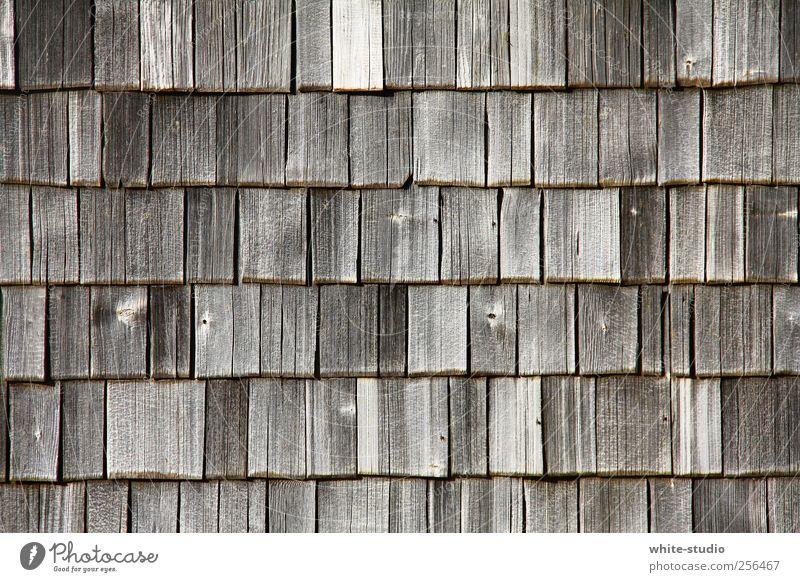 Verwitterte Holz Schindeln in den Chiemgauer Bergen Berge u. Gebirge wandern Alpen Hütte Fassade Dach Dachziegel alt historisch braun grau Vergänglichkeit Zeit
