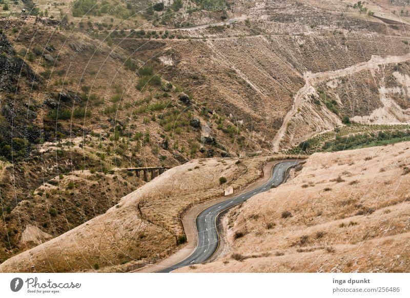 Golan Heights-Israel Umwelt Natur Landschaft Urelemente Sommer Herbst Gras Hügel Berge u. Gebirge Naher und Mittlerer Osten Brücke Straße Wege & Pfade