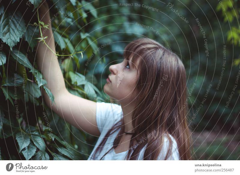 . feminin Junge Frau Jugendliche Erwachsene 1 Mensch 18-30 Jahre Pflanze Baum Sträucher Efeu Grünpflanze brünett langhaarig berühren Denken Blick träumen