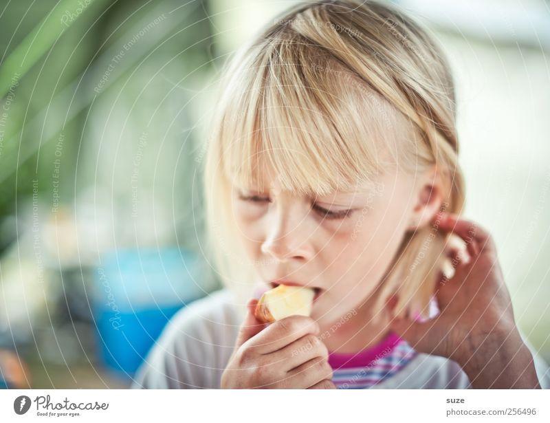 Apfel essen Mensch Kind schön Mädchen Gesicht feminin Haare & Frisuren Kopf Essen blond Kindheit Frucht natürlich Lebensmittel authentisch Ernährung