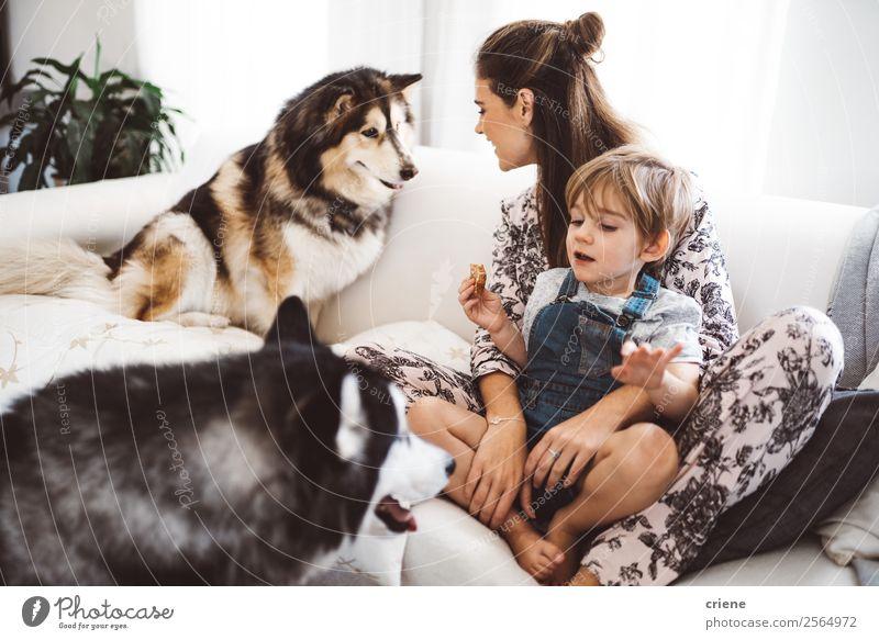 Mutter und Sohn genießen die Zeit mit ihrem Husky zu Hause. Lifestyle Glück schön Sofa Kind Mensch Junge Frau Erwachsene Familie & Verwandtschaft Haustier Hund