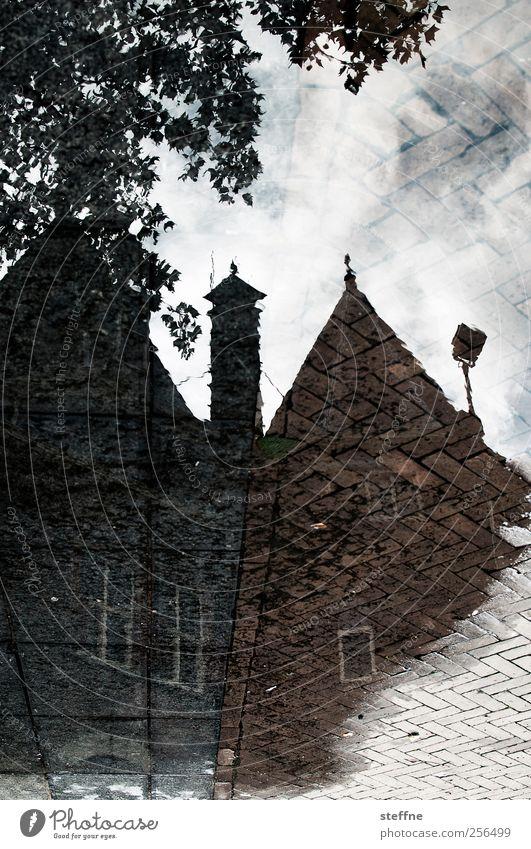 Nieuwmarkt Baum Amsterdam Stadtzentrum Altstadt Haus Traumhaus Fassade Fenster nass Pfütze Reflexion & Spiegelung pfützenspiegelung Surrealismus Mittelalter eng