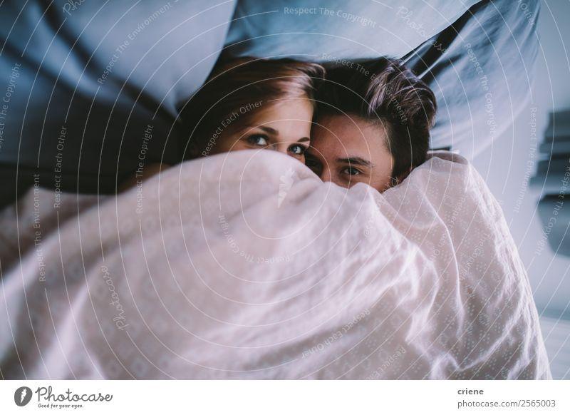 junges Paar kuschelnd unter der Decke im Bett Lifestyle Glück Schlafzimmer Mensch Frau Erwachsene Mann Lächeln Liebe schlafen Fröhlichkeit Zusammensein unten