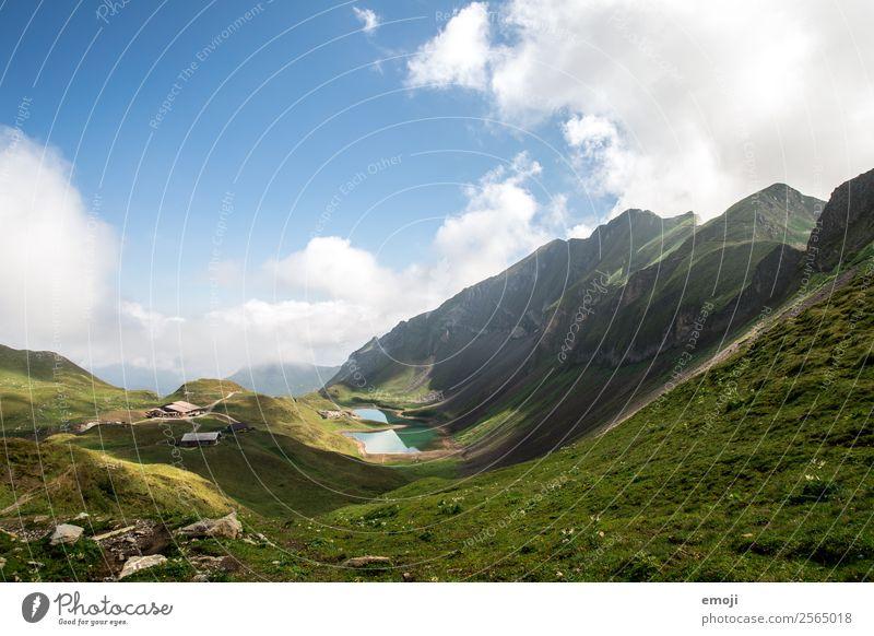 Eisee Umwelt Natur Landschaft Himmel Sommer Schönes Wetter Wiese Alpen Berge u. Gebirge See natürlich blau grün Gebirgssee eisee Schweiz Brienzer Rothorn