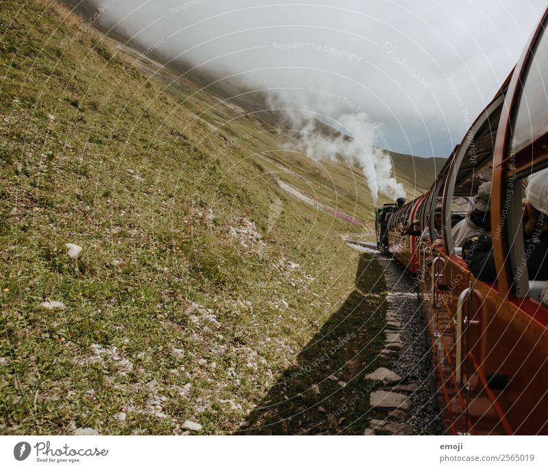 Brienz-Rothorn-Bahn Freizeit & Hobby Dampflokomotive dampfbahn Herbst Nebel Wiese alt authentisch Schweiz Brienzer Rothorn Wanderausflug Wandertag Nostalgie