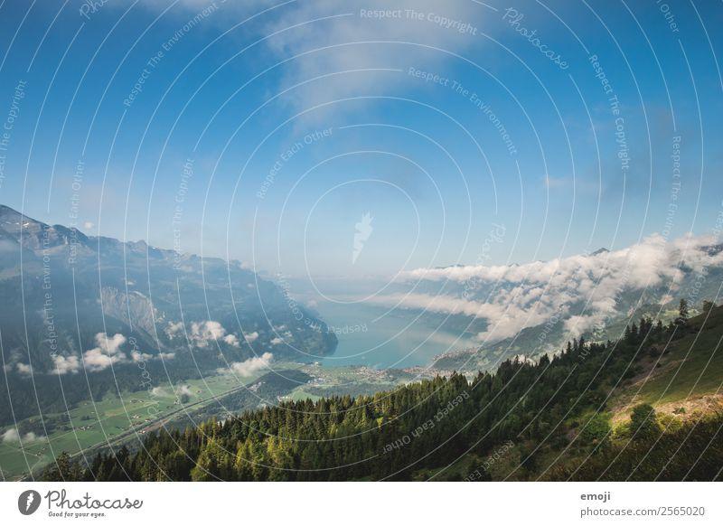 Brienzersee Umwelt Natur Landschaft Himmel Herbst Schönes Wetter See natürlich blau Schweiz Tourismus Ferien & Urlaub & Reisen Wandertag Farbfoto mehrfarbig