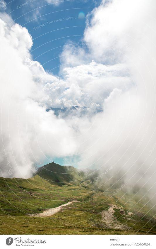 Brienzersee Umwelt Natur Landschaft Himmel Wolken Sommer Herbst Klima Wetter Alpen Berge u. Gebirge natürlich grün Tourismus Schweiz Wandertag Wanderausflug