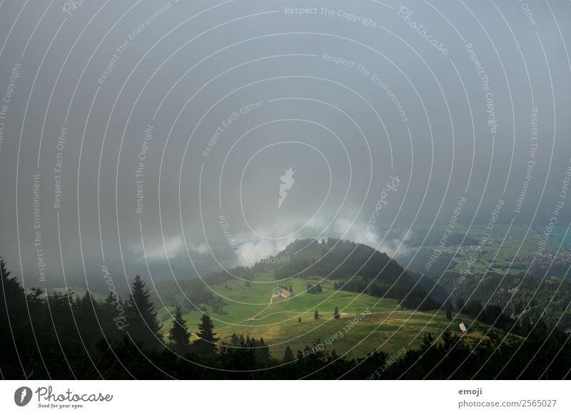 Hügel Umwelt Natur Landschaft Wolken Herbst Klima Wetter schlechtes Wetter Nebel außergewöhnlich bedrohlich dunkel Schweiz Farbfoto Außenaufnahme Menschenleer