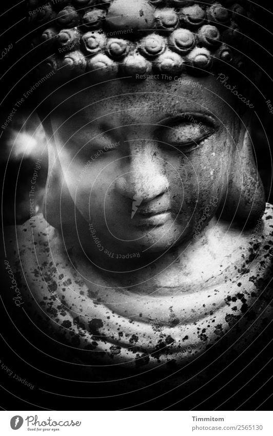 Buddha Figur grau schwarz weiß Gefühle Zufriedenheit Akzeptanz Gelassenheit ruhig Schwarzweißfoto Buddha Statue Buddhismus Außenaufnahme Menschenleer Tag Licht