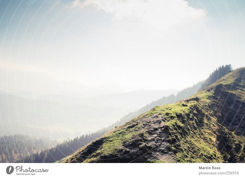 Oben Natur Landschaft Himmel Wald Hügel Felsen Berge u. Gebirge Wege & Pfade Bergkamm gehen wandern Ferne Unendlichkeit hoch Farbfoto Außenaufnahme Menschenleer