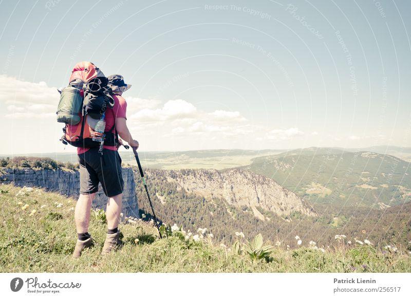 Sound of Nature Wohlgefühl Zufriedenheit Erholung ruhig Duft Ferien & Urlaub & Reisen Ausflug Abenteuer Ferne Freiheit Umwelt Landschaft Pflanze Urelemente Luft
