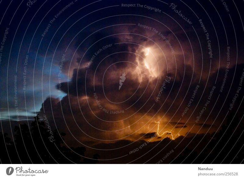 BAZONNNNGGG Umwelt Natur Urelemente Himmel Wolken Gewitterwolken dunkel Blitze Wetter Lichterscheinung Farbfoto mehrfarbig Außenaufnahme Nacht