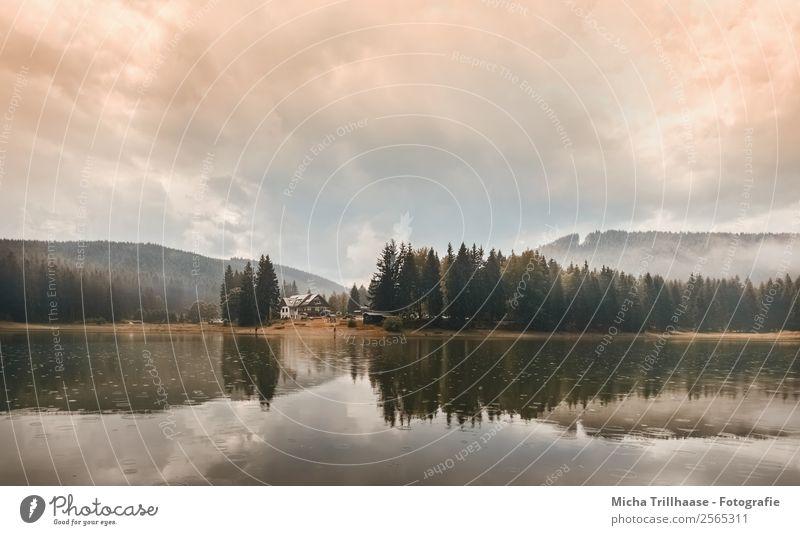 Herbststimmung am See Natur Landschaft Wasser Himmel Wolken Sonnenlicht Regen Baum Wald Hügel Berge u. Gebirge Lütschetalsperre leuchten natürlich blau grün