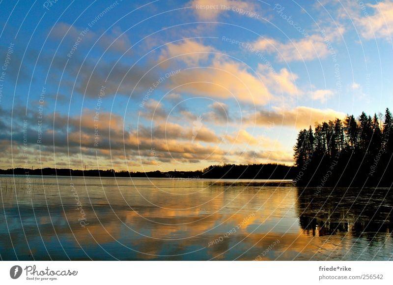 Land der tausend Seen Himmel Natur blau Wasser Baum Ferien & Urlaub & Reisen Winter Wolken ruhig Ferne Erholung Landschaft Freiheit See Zufriedenheit Schwimmen & Baden